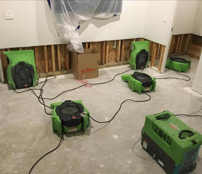 Rebuilding a Room after Mold Damage After