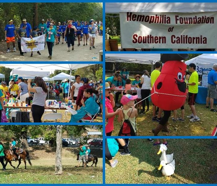 Hemophilia Walk in Los Angeles