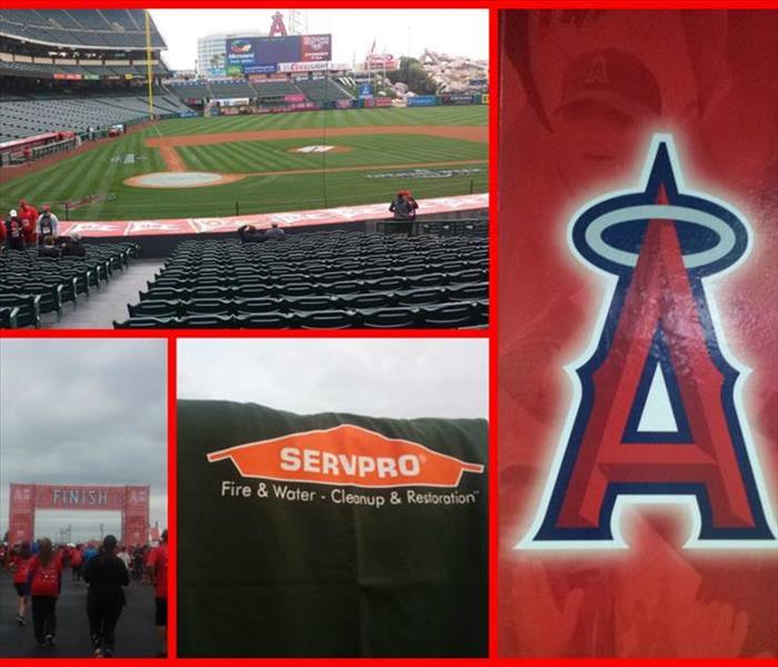 Anaheim Angel 5K & Fun Run