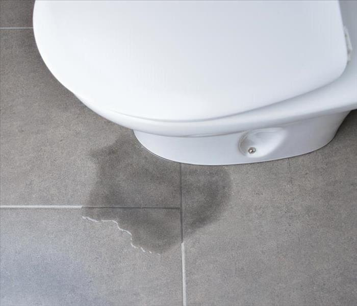 Water Damage Common Toilet Problems and Easy DIY Repairs